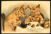 Two gambling pigs