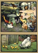 Farmyard scenes with chickens and a horse