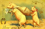 Pigs on a French New Year Card