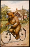 Teddy Bear Cycling