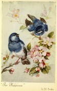 """Bluebirds """"For Happiness"""""""