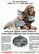 Advert for a Pets Club