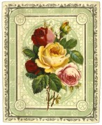 Roses in a decorative border