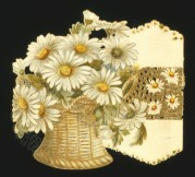 Daisies in a Wicker Vase