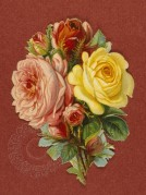 Bunch of Roses on a Red Background