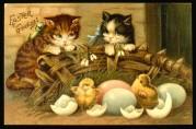 Cats and Chicks on an Easter Greetings Card
