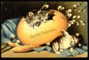 Three Kittens with a broken egg
