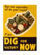 Dig for Victory Now