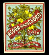 Label for Lemon Liqueur