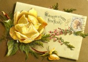 A New Year Rose