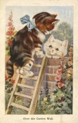 Two kittens 'Over the garden wall'