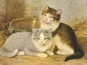 Two kittens with a bowl