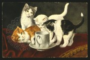 Four kittens with a cup and saucer