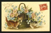 Three kittens with a basket of flowers on a postcard