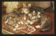 Three kittens with a rattle
