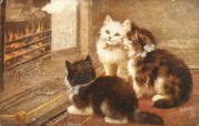 Three cats warm themselves by the fire