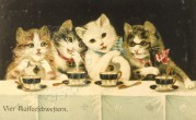 Four cats drink coffee