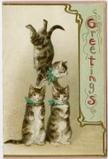 Acrobatic Cats on a Greetings Card