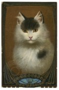 A Cat portrayed in an ornate mirror
