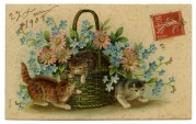 Kittens play in a basket of flowers