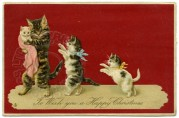 Happy Christmas Card with Cats