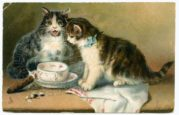 A Pair of Cats with an Empty Cup and Saucer