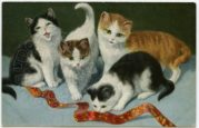 Four Kittens with a Ribbon