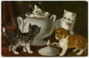 Four Kittens Explore a China Urn