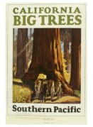 Poster for Southern Pacific Travel
