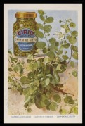 Advert for Cirio Capers in Vinegar