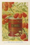 Advert for Cirio Double Concentrated Tomato Puree