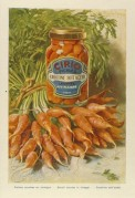Advert for Cirio Carrots in Vinegar