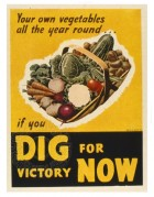 Dig for Victory Now war poster