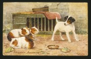 Friendly Advances! A puppy with three hamsters