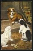 A puppy with two rabbits