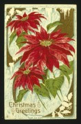Poinsettias on a Christmas card