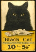 Black Cat Cigarette Showcard
